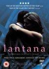 Lantana [2002]