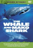 Shark Attack - The Whale And Mako Shark