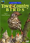 A Guide To Town And Country Birds