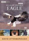 Wildlife Special - Eagle [1997]
