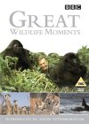Great Wildlife Moments Introduced by David Attenborough