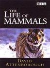Life of Mammals [2003]