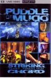 Puddle Of Mudd - Striking That Familiar Chord [UMD Universal Media Disc]