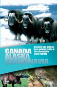 Wildlife - Canada / Alaska / Scandinavia