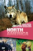 Wildlife - Secret Animals Of North America