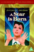 A Star Is Born [1954]