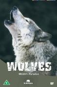 Wildlife Paradise - Wolves