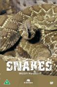 Wildlife Paradise - Snakes