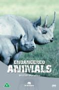 Wildlife Paradise - Endangered Animals