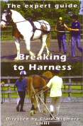 The Expert Guide - Breaking to Harness