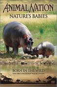 Animal Nation - Nature's Babies: Born in the Wild