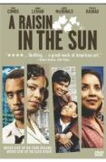 cheap A Raisin In The Sun dvd