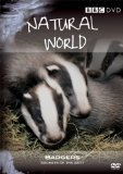Natural World - Badgers - Secrets Of The Set