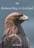 DVD Guide to Birdwatching in Scotland