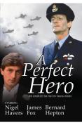 Perfect Hero