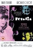 Petulia [DVD] [1968]