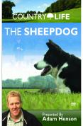 Country Life - The Sheep Dog [DVD]