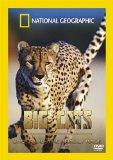 Big Cats - Cheetahs The Deadly Race [DVD]