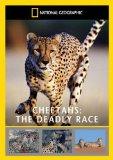 Cheetah's - The Deadly Race [DVD]