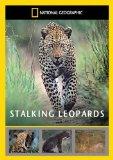 Stalking Leopards [DVD]