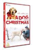 A Dog Named Christmas [DVD] [2009]
