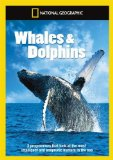 National Geographic: Whales & [DVD]