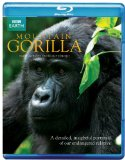Mountain Gorillas [Blu-ray]