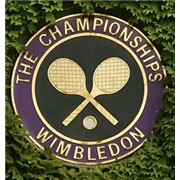 Wimbledon: 2011 - The Men's Final [DVD]