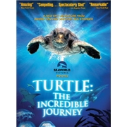 Turtle: The Incredible Journey 3D (3D Blu-Ray + Blu-Ray)