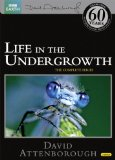 Life in the Undergrowth (Repackaged) [DVD]