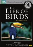 The Life of Birds (Repackaged) [DVD]