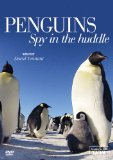 Penguin - Spy in the Huddle [DVD]