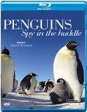 Penguin Spy in the Huddle [DVD] [Blu-ray]