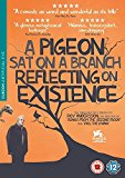 A Pigeon Sat on a Branch Reflecting Upon Existence [DVD]