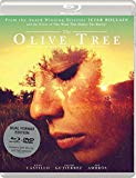 The Olive Tree (2016) (DVD)
