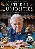 David Attenborough's Natural Curiosities - Series 4 [DVD]