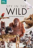 Spy in the Wild (BBC) 2-disc [DVD]