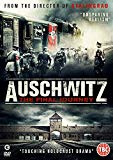Auschwitz: The Final Journey [DVD]