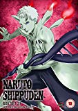 Naruto Shippuden Box 31 (Episodes 388-401) [DVD]