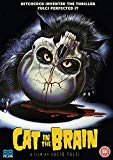 A Cat in the Brain [DVD]