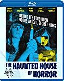 The Haunted House of Horror (Blu-Ray) (Director Approved Restoration) Blu Ray