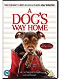 A Dog's Way Home [DVD] [2019]