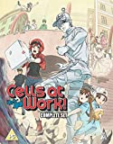 Cells At Work Collection BLU-RAY [2019]