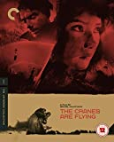 The Cranes Are Flying (1957) (CRITERION COLLECTION) UK Only [Blu-ray] [2020]