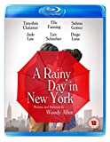 A Rainy Day in New York [Bluray] [Blu-ray]